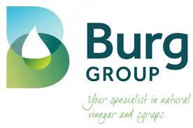 Logo van Burg Group